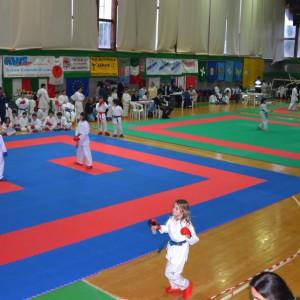 karate-300x300